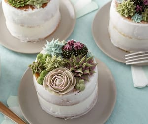 birthday cake, piping, and succulents image