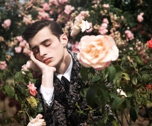 flowers, rose, and boy image
