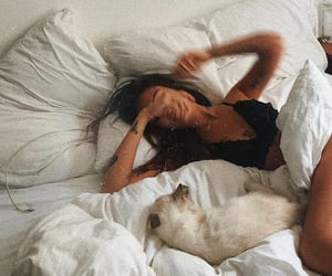 bed, animal, and girl image