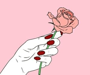rose and 🌹 image