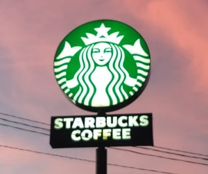 board, pink sky, and starbucks image