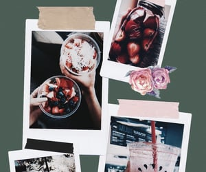 aesthetic, flowers, and polariod image