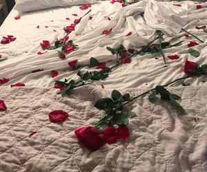 rose, bed, and love image