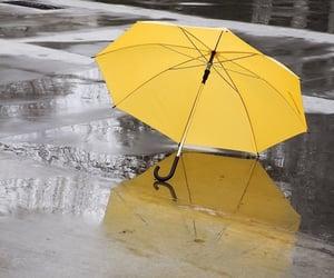umbrella, yellow, and rain image