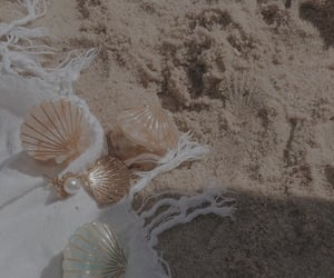 beach, sand, and shell image