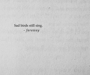 quotes, bird, and sad image