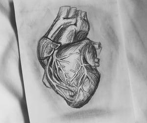 aesthetic, anatomy, and art image