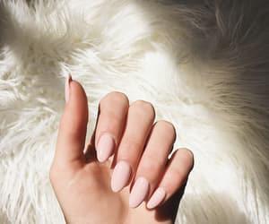 nails, pink, and acrylic nails image