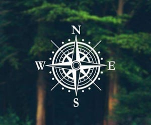 compass, forest, and green image