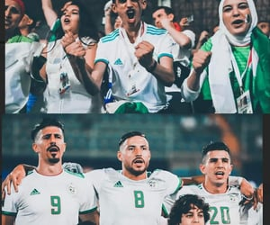 dz, can 2019, and algerie image