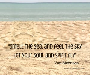 quotes, sea, and beach image