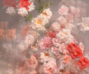 florals, flowers, and girly image