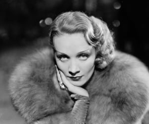 glamour, Marlene Dietrich, and old hollywood image