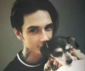 army, bvb, and andybiersack image