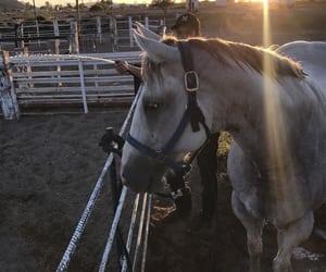 atardecer, caballos, and rancho image