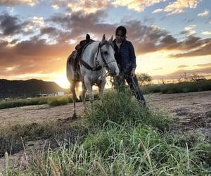 caballos, rancho, and atardeceres image