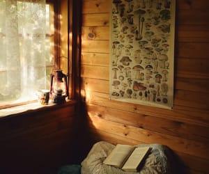 book, mushroom, and cozy image