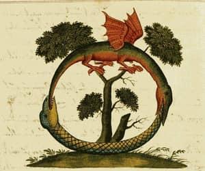 alchemy, art, and books image