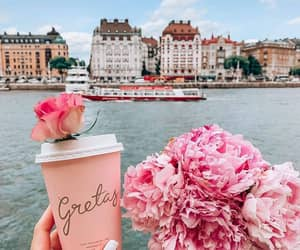flowers, drink, and pink image