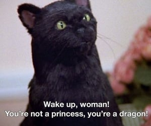 salem, cat, and empowerment image