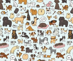 dog, background, and pattern image