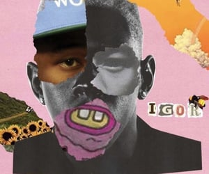 aesthetic, wallpaper, and tyler the creator image