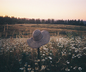 hat, daisy, and flowers image