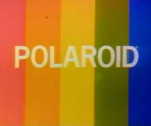 polaroid, vintage, and rainbow image