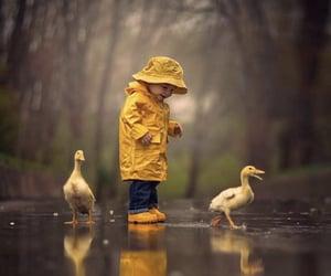 rain, duck, and baby image