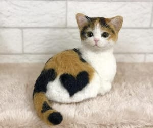 cat, cats, and heart image