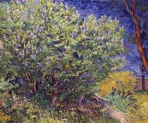 vincent van gogh, lilac bush, and 1889. image
