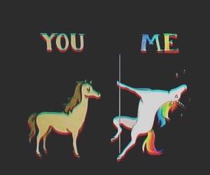 funny, horse, and unicorn image