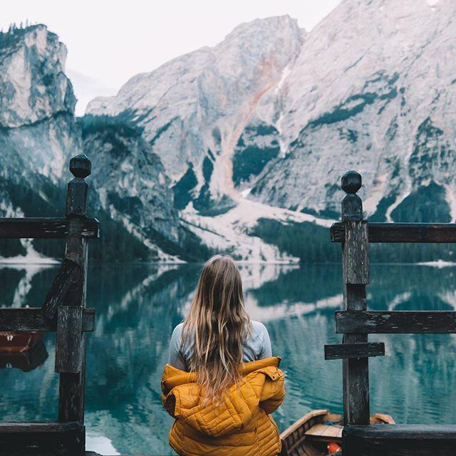 freedom, nature, and photo image