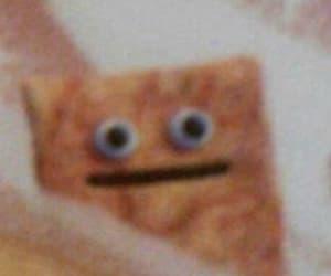meme, mood, and reaction image