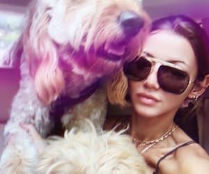 animals, Harry Styles, and celebrities image