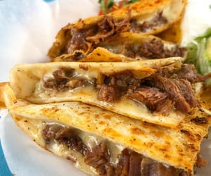 mexican food and quesadilla image