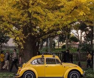 yellow, car, and tree image