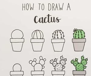 cactus, drawing, and ideas image