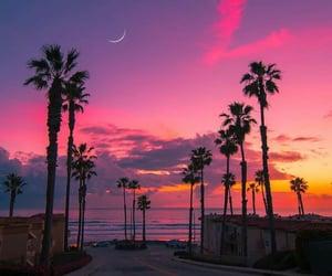 orange, sunset, and palm image