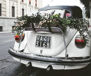 car, city, and flowers image