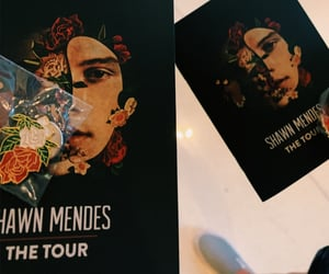 staples center, shawn mendes, and shawnmendesthetour image