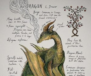 dragon and aesthetic image