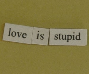 love, stupid, and quotes image