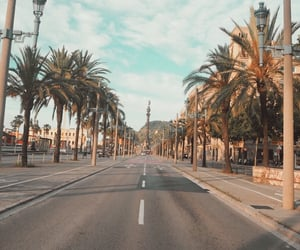 Barcelona, europe, and palm image