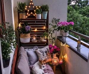dog, balcony, and home image