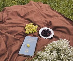 aesthetics, blanket, and books image