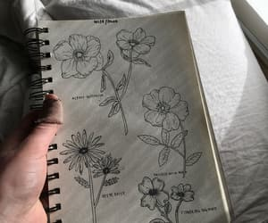 art, beautiful, and buttercup image