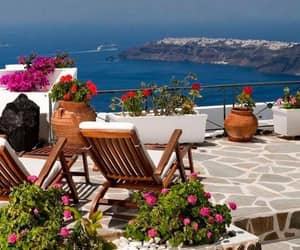 flowers, santorini, and Greece image