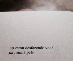 brasil, citações, and poesias image