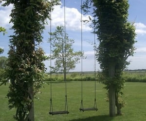 green, nature, and swing image